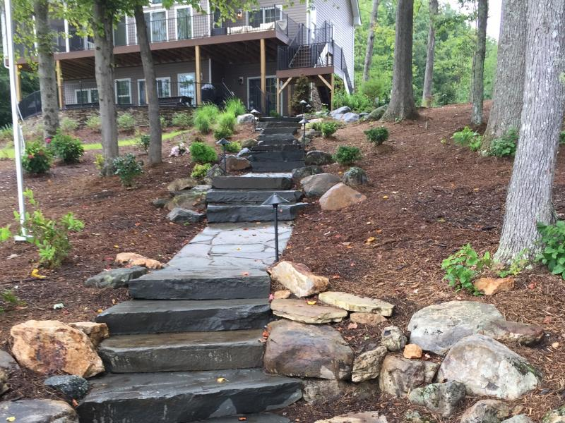 Landscape Plantings Lake Anna